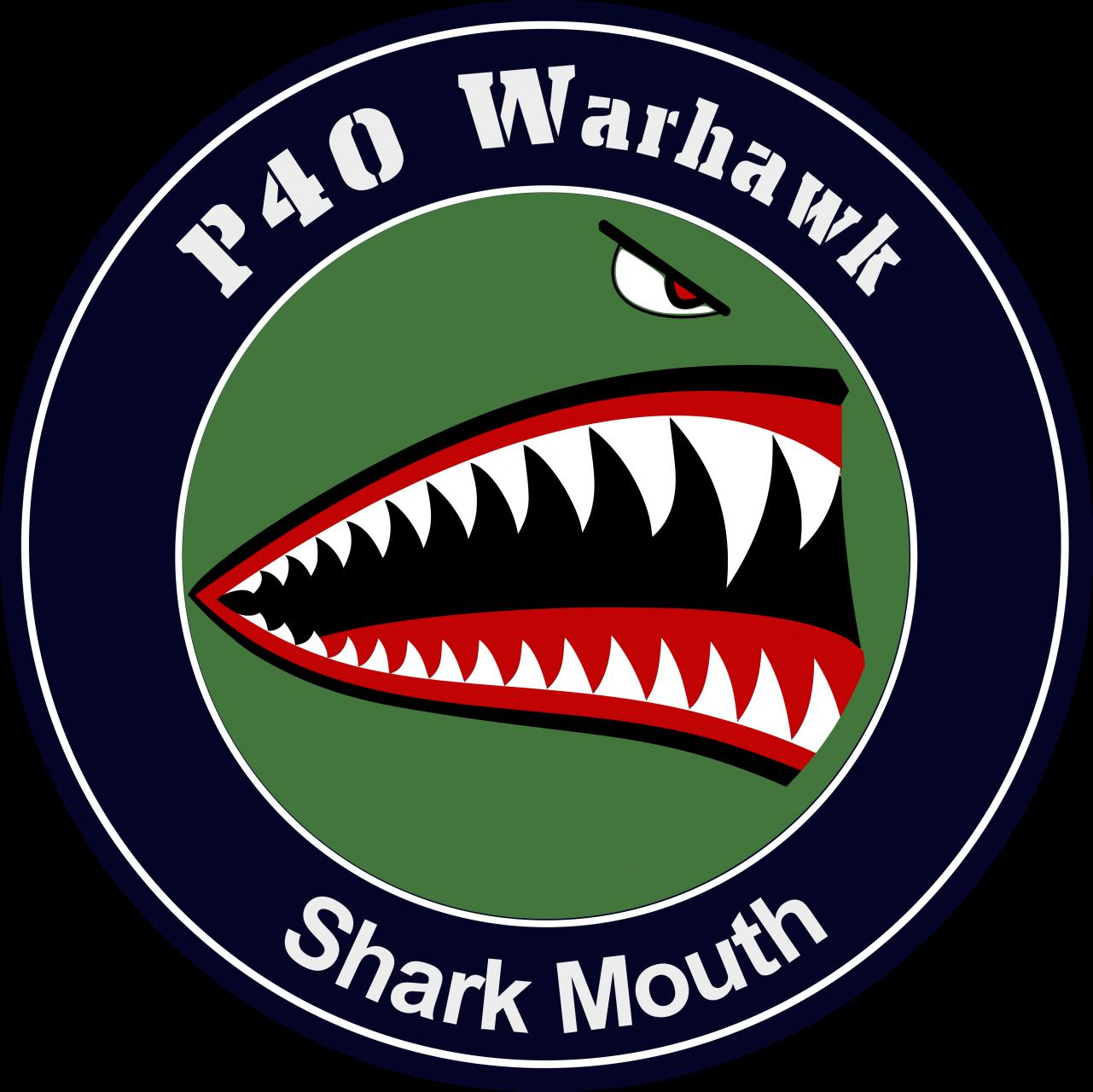 P40 Warhawk Shark Mouth
